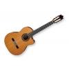 Ibanez – Guitares Electro-Nylon G300CE-NT G300CENT Neuf garantie 3 ans