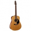 Guitare acoustique SeaGull Coastline COS6GT