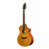 BREEDLOVE C250-CME